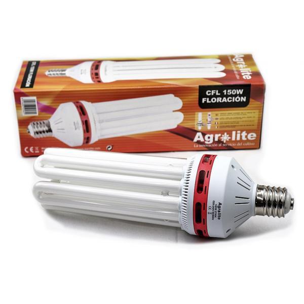 Lampe CFL de floraison - Basse consommation (150 W)