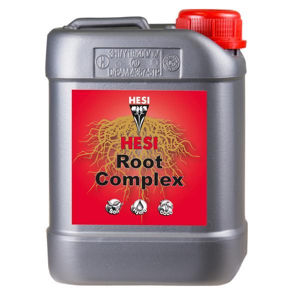 Root Complex (2.5 L)