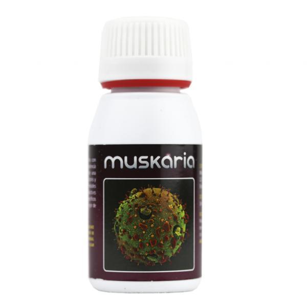Muskaria (60 ml)
