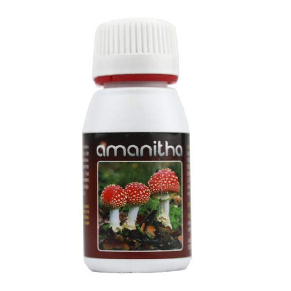 Amanitha (60 ml)