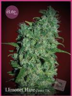 Llimonet Haze Clásica THC (3-seed pack)