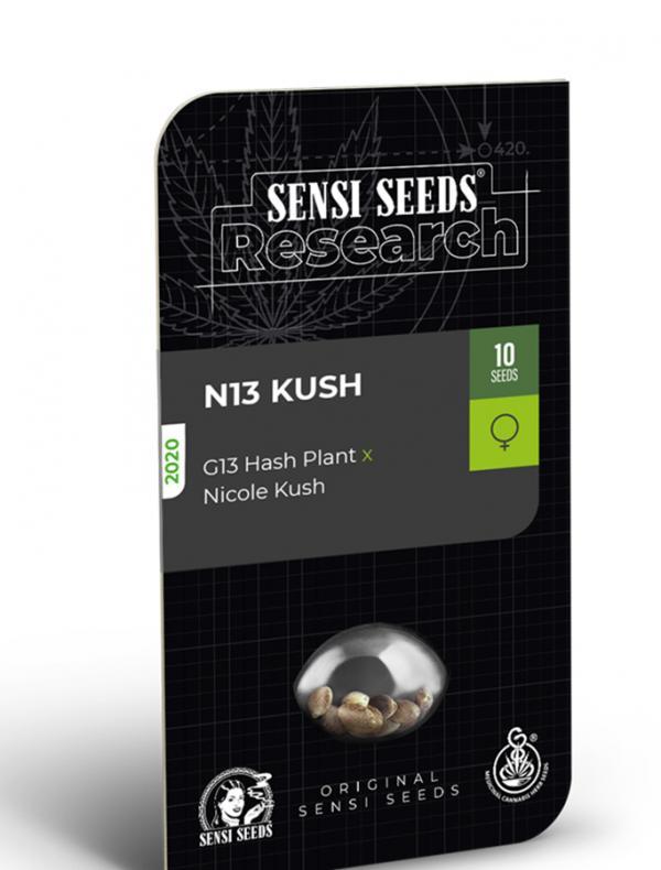 N13 Kush (Pack 1 semilla)