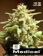 B3 Medical (1-seed pack)