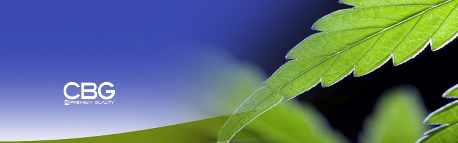 Cannabiogen Cannabis Seeds