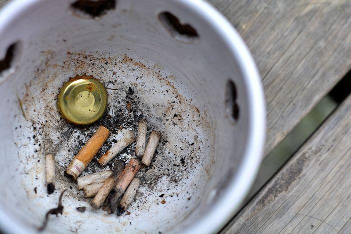 Por qué los fumadores de cannabis son los campeones del reciclaje - LaMota  GrowShop