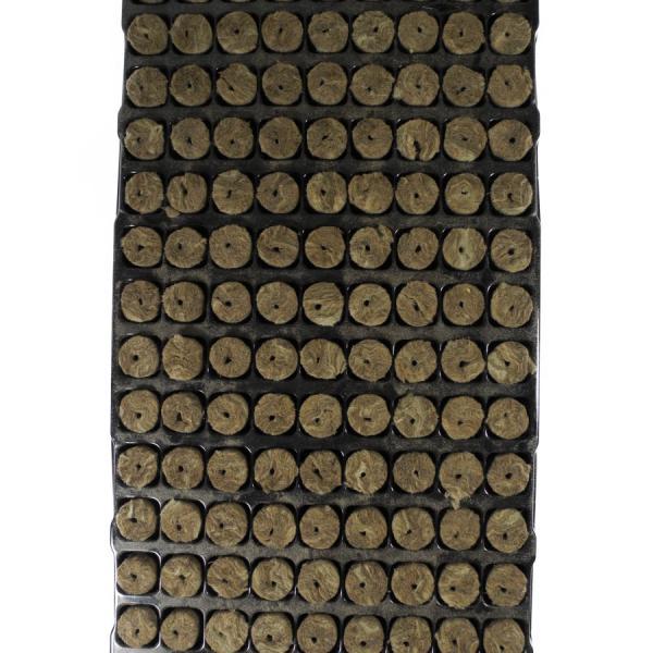 Bandeja Semillero Lana De Roca Pequeño 126 Uds (1 unidad)
