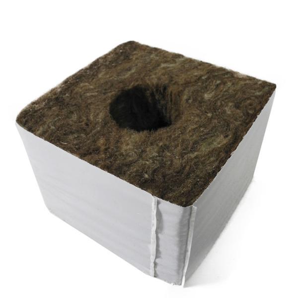 Cube de laine de roche - 10x10x6,5 cm (grand trou) (1 unité)