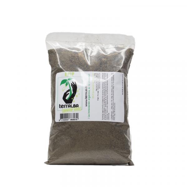 Kelp Ascophyllum Nosodum (500 g)