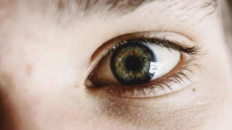 un-estudio-demuestra-la-eficacia-del-thc-para-prevenir-la-pérdida-de-visión