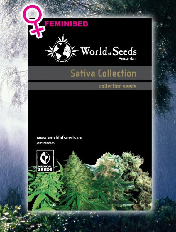 Sativa Collection (8-seed pack)
